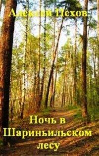 Ночь в Шариньильском лесу
