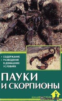 Пауки и скорпионы. Содержание и разведение в домашних условиях