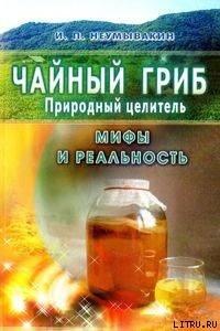 Чайный гриб - природный целитель. Мифы и реальность