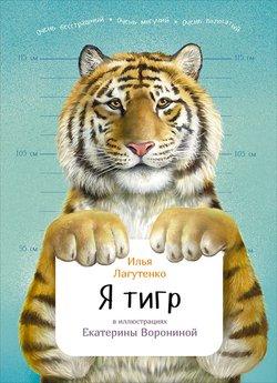 Картинки красивые тигры (35 фото) • прикольные картинки и юмор.
