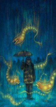 Последний сезон дождей