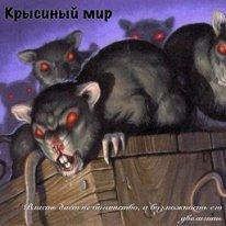 Крысиный мир