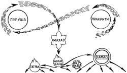 Аюрведа наука самоисцеления