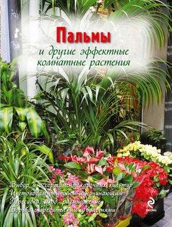 Пальмы и другие эффектные комнатные растения