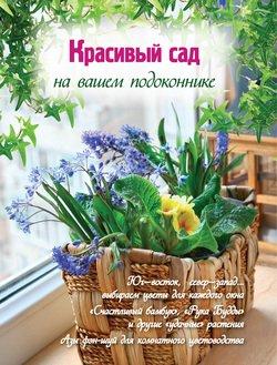 Красивый сад на вашем подоконнике