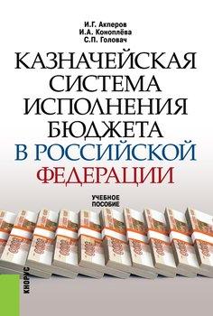 Казначейская система исполнения бюджета в Российской Федерации