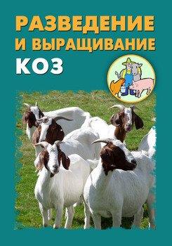 Разведение и выращивание коз