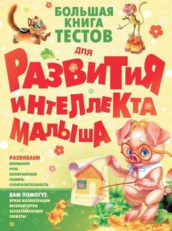 Большая книга тестов для развития интеллекта малыша