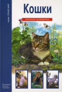 Кошки. Школьный путеводитель