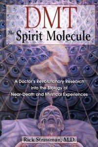ДМТ — Молекула духа