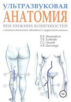 Ультразвуковая анатомия вен нижних конечностей