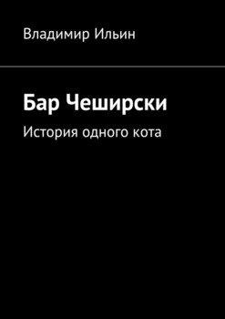Бар Чеширски. История одногокота
