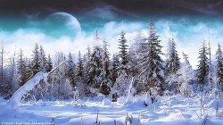 Зимняя охота в сибирской тайге