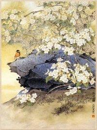 Цветы корицы, аромат сливы