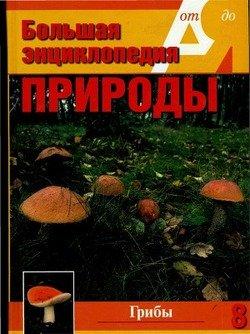 Учебник русского языка баранов читать онлайн