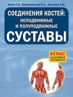 Великий могучий русский язык андрей усачёв читать с картинками