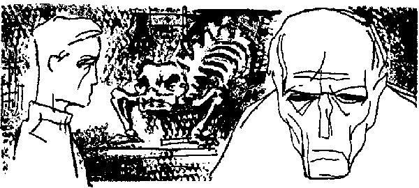 Обложка книги сандра браун дымовая завеса