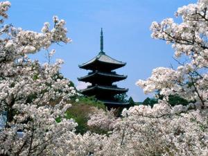 Несовременная Япония