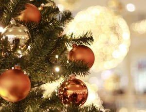 Новогодне-рождественское чудо