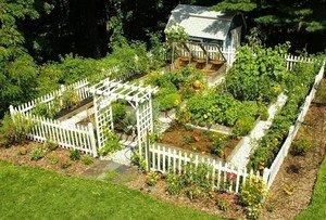 Книги в помощь огородникам и садоводам