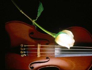 Музыка и музыканты в литературе