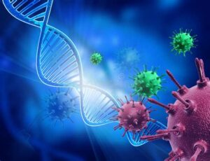 Вирусы и пандемии