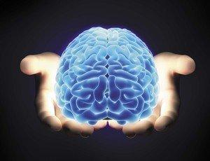 Всё, что нужно знать о мозге